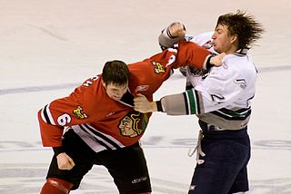 320px-Fight_in_ice_hockey_2009